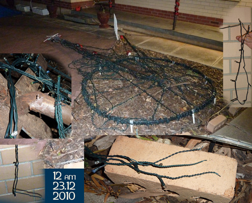 Mega Tree Broken by Vandals